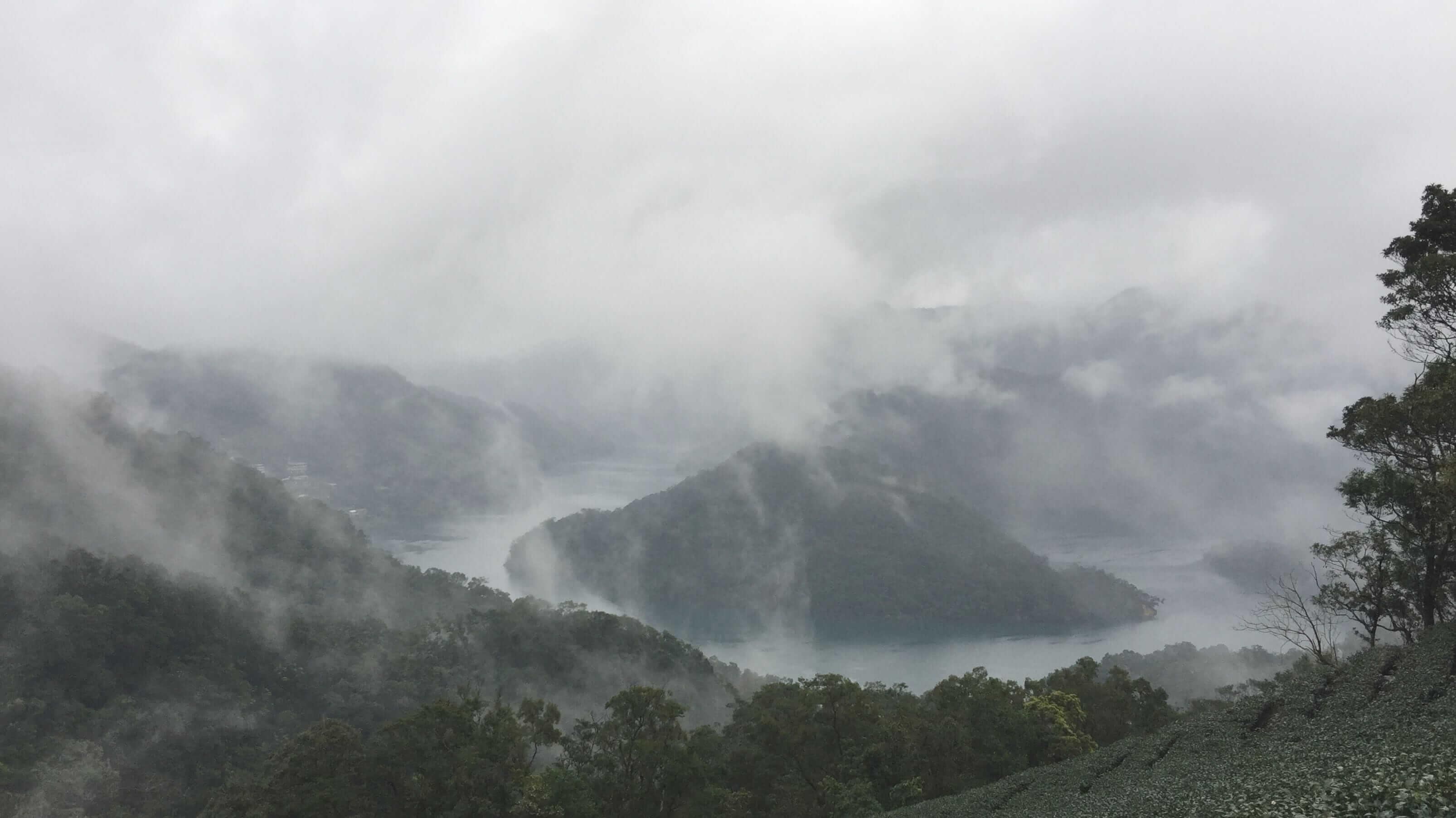 茶、酒、咖啡⋯⋯ 到台灣的千島湖中探一片隱世茶園吧!